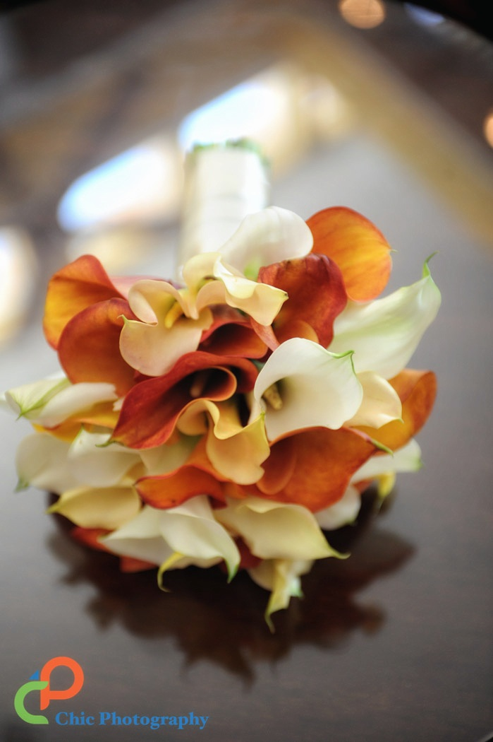 Virgin-Islands-Weddings-105